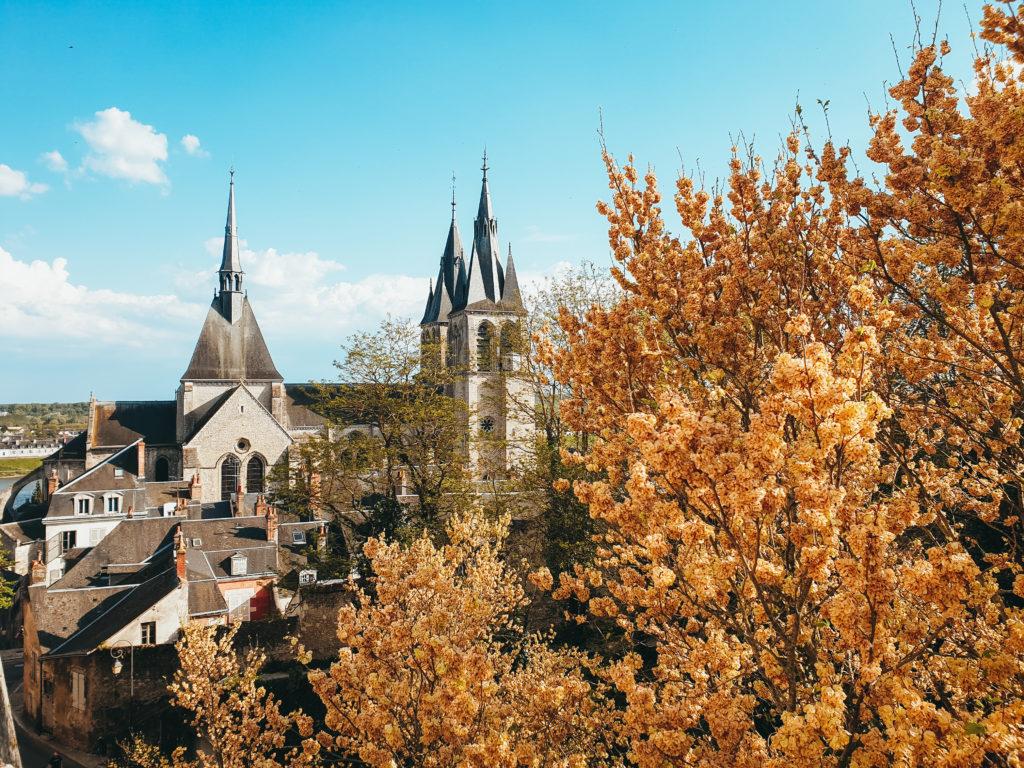 Vue depuis le château de blois - Loire